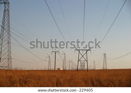 Power cables on the plains