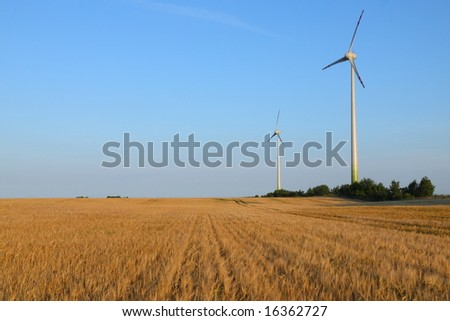 Power generating wind turbines on cultivated wheat field, Poland