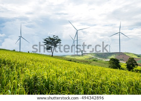 power generation wind turbine on green rice field against blue sky background, used for green earth concept