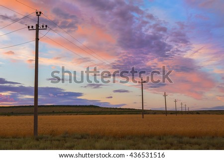 power line in a wheat field at sunset