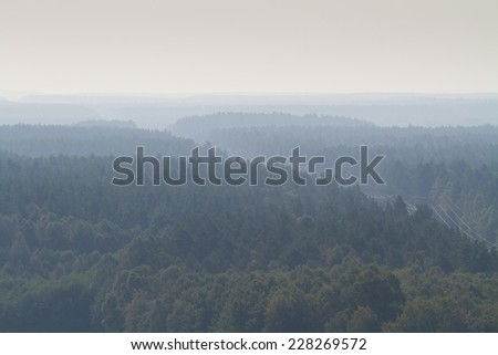 power line in the forest - stock photo