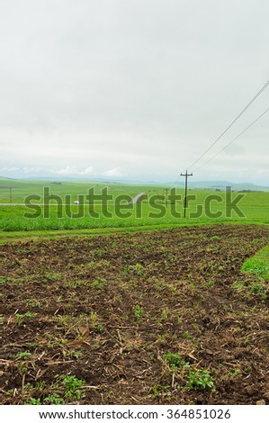 Power lines in a field with a freshly ploughed  piece of land