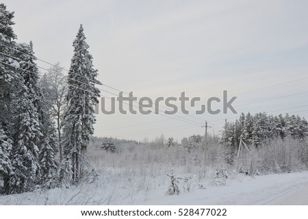 Power lines in the snowy frosty forest