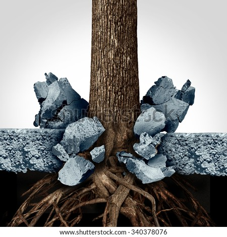 Power of determination through growth as a business concept with a tree and roots growing through a thick slab of cement breaking out of the obstacle as a powerful metaphor for success motivation. - stock photo
