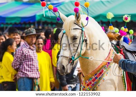 "PRACHUAPKHIRIKHAN, THAILAND - DECEMBER 15 : Fair of competition the animals ""Livestock Show 2012"" on December 15, 2012 in Pranburi, Prachuapkhirikhan, Thailand - stock photo"