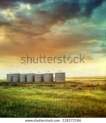 Prairie grain silos in late summer - stock photo