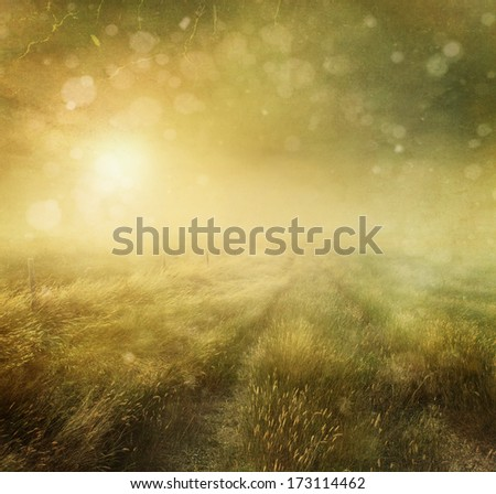 Prairie grasses with vintage color filters and textures - stock photo