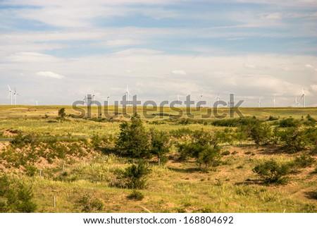 prairie in Inner-Mongolia, summer, China - stock photo