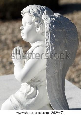 praying angel - stock photo