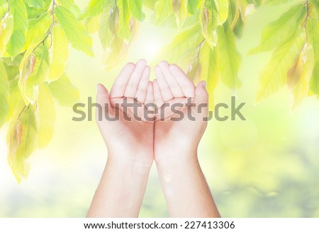 Praying hands over nature background  - stock photo