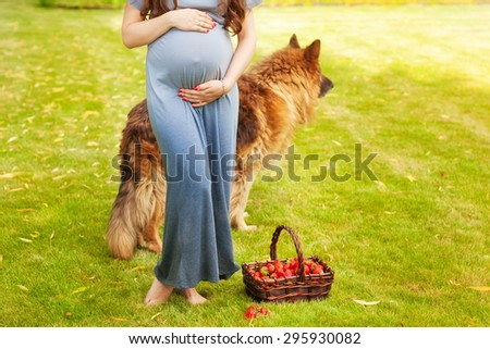 Pregnant woman holding her belly. Walk the dog. Companion for pregnancy. Detail of young pregnant - stock photo