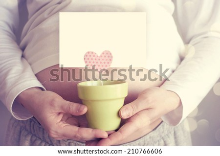 Pregnant woman with chickens - stock photo