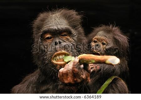 Prehistoric / primordial man - stock photo