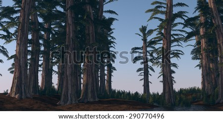 prehistoric tempskya grove - stock photo