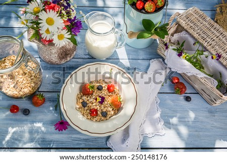 Preparations for breakfast in the garden - stock photo
