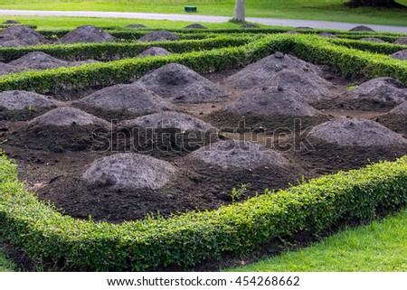Prepare the soil for planting in the garden. - stock photo