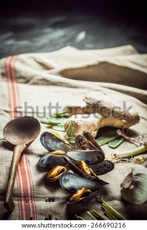 Preparing a tasty seafood dinner with shellfish using freshly cooked marine mussels with spicy root ginger and garlic lying on a cloth in a rustic kitchen, with copyspace - stock photo