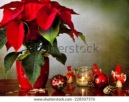Preparing Christmas: a beautiful poinsettia in a red vase on a wooden table with a candle in glass vase, Christmas glass balls, pine cones and little angels made of straw. - stock photo
