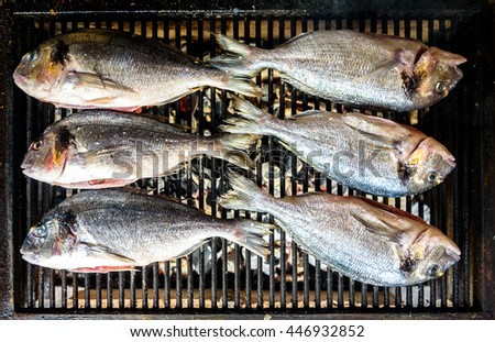Preparing Fish on the charcoal grill. Home barbecue picnic with sea bream - stock photo