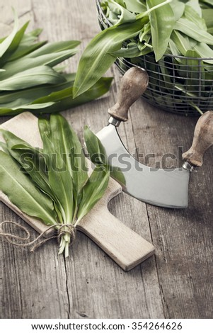 Preparing freshly harvested wild garlic