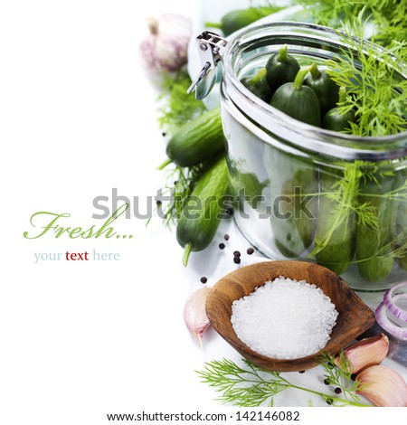 preparing preserves of pickled cucumbers in jars with spices and herbs  (with easy removable sample text) - stock photo