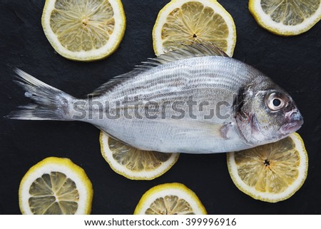 Presentation of fresh sea bream isolated on rounded lemon clices on black stone surface, top view.