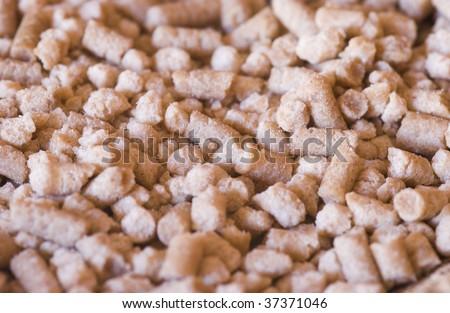 Pressed argan nuts - stock photo