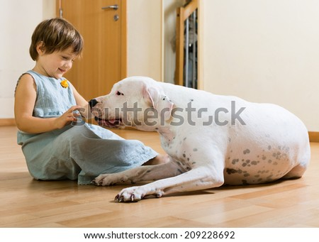 preteen smiling girl on the floor with dogo Argentino