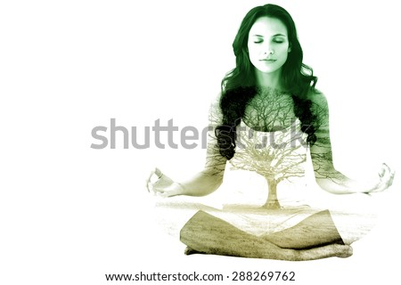 Pretty brunette doing yoga against tree in showy field - stock photo