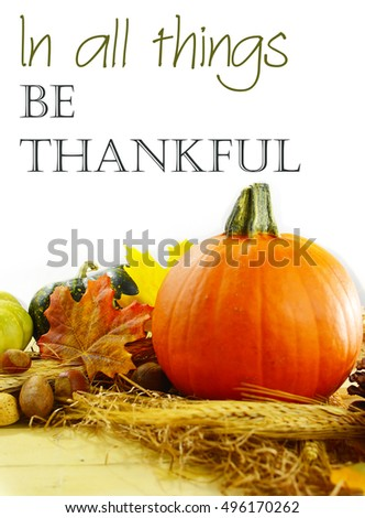 Pretty fall still life of a small pumpkin, gourds, nuts, wheat and autumn leaves in front of soft white draped fabric. Bright light is streaming in from behind. Thanksgiving message added