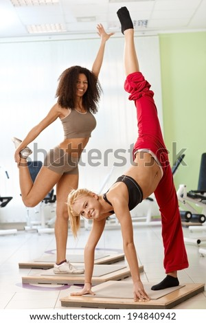 Pretty female gymnasts posing at the gym, smiling. - stock photo