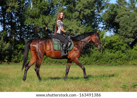 Pretty girl and bay horse during the sunny day in summer