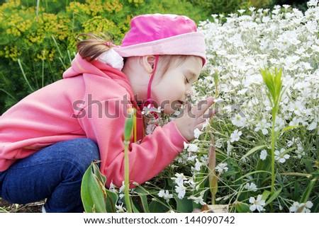 Pretty Little Girl in a Garden Sniffs Flowers - stock photo