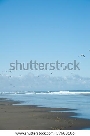 Pretty Pacific Ocean Beach in Washington State - stock photo