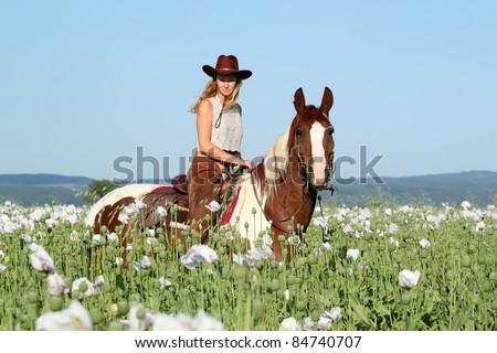 Pretty woman posing on horse in the poppy field - stock photo