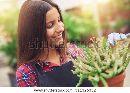 Pretty young horticulturalist working with potted plants in the greenhouse removing dead leaves as she readies them for sale in the shop - stock photo