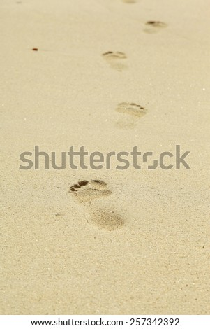 Pretty young woman laying at the beach - stock photo