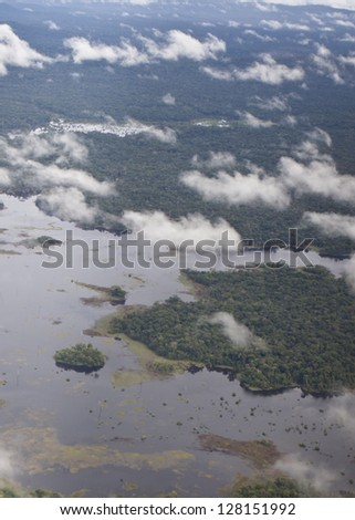 Primary rainforest viewed from the air in Venezuela