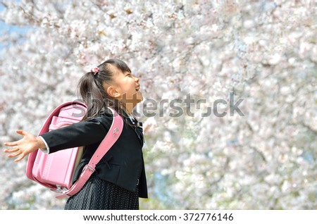 primary school student (new first grader-cherry blossom) - stock photo