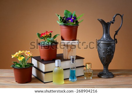 Primrose in vase, books and a metal carafe on the table - stock photo