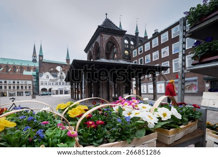 primroses at Lubeck town square at spring - stock photo