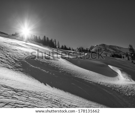 Pristine snow with drifts and ski tracks.  Sun is rising over the trees.  Near Jackson Hole Ski resort. - stock photo