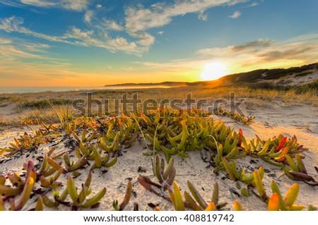 Pristine untouched Australian beach - stock photo