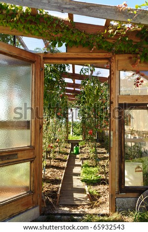 Private wooden Greenhouse - stock photo