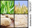 Process of growing bread - stock photo