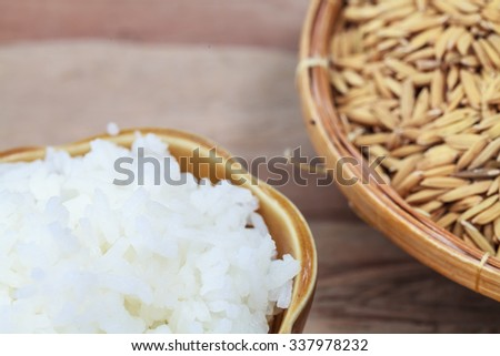 Product  Cultivation paddy and cooked rice. - stock photo