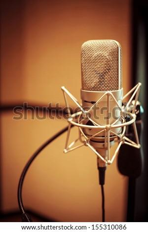 Professional condenser studio microphone - stock photo