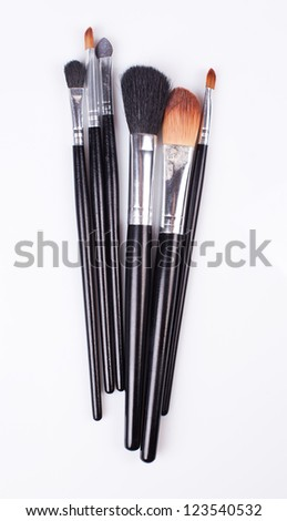 professional cosmetic brushes. Used