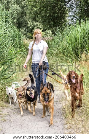 Professional dog walking service of a female service provider - stock photo