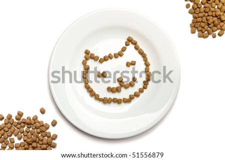 Professional dry cat food forming cat's face on a white plate and heaps of food in the corners. - stock photo
